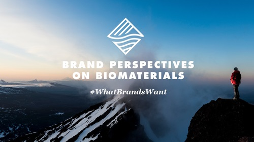 Brand Perspectives on Biomaterials: Results Published