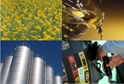 NNFCC News Review: Biofuels Issue 71, February 2018